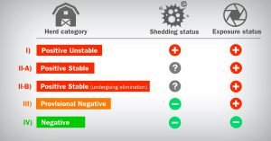 Farm classification of swine farms according to PRRS virus shedding and exposure status.