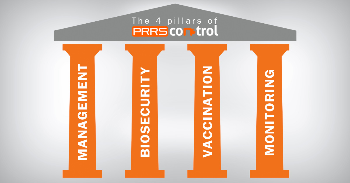 The 4 pillars of PRRS control: Management, Biosecurity, Vaccination and Monitoring.