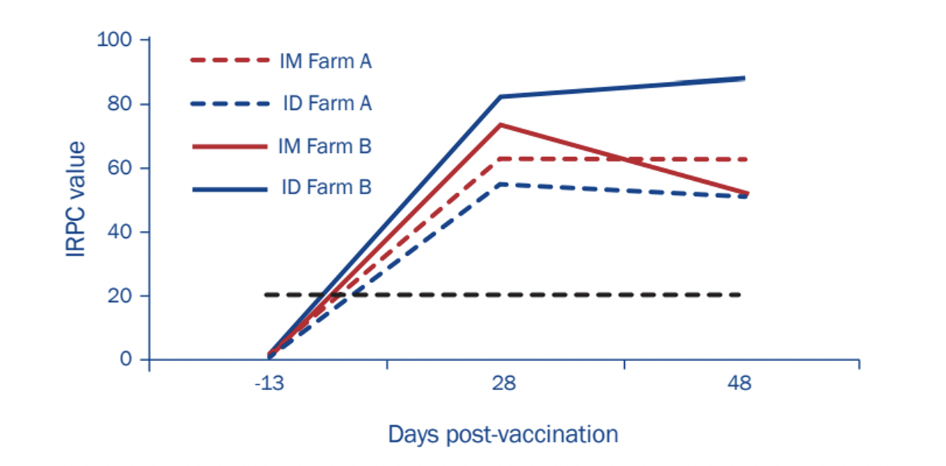PRRSV antibody response in serum of individual animals vaccinated via the IM or the ID route on Farms A and B